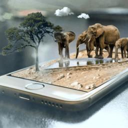 freetoedit ircelephant madewithpicsart elephant iphone