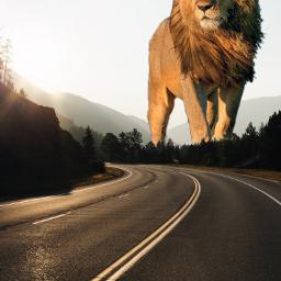 freetoedit lion animal biganimal competition ecgiantanimals