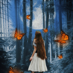 freetoedit woman butterflies forest fantasy srcfullmoon