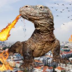 freetoedit fire the people giantanimals ecgiantanimals