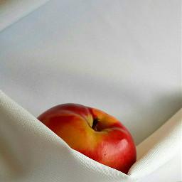 myphoto myphotography photography fruit apple freetoedit