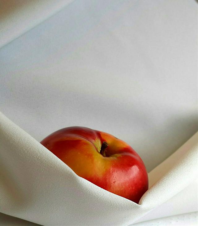 #myphoto #myphotography #photography #fruit #apple #redapple #white #fabric #still_life #stilllife #simple #closeup  #wrappedandready #photo  #freetoedit