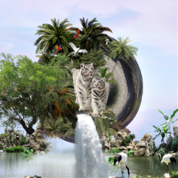 freetoedit nature tigers parrots waterfall
