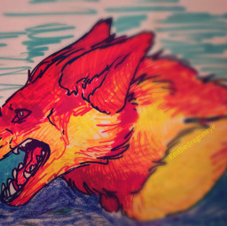 drawing wolf