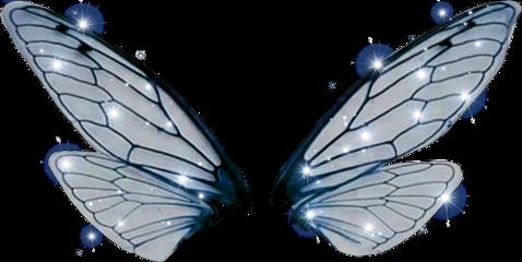 fly magical fairywings wings twinkle freetoedit