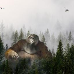 freetoedit kinglouie junglebook ecgiantanimals giantanimals