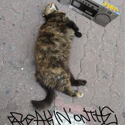 graffiti cat street bboy rap freetoedit