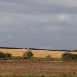 landscape countryside myview morningwalk freetoedit