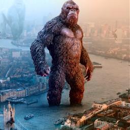 freetoedit gorilla fantasy surreal ecgiantanimals
