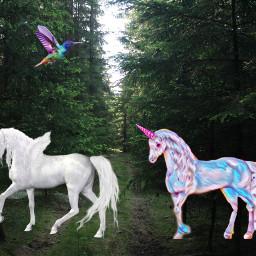 freetoedit unicorn animals birds nature