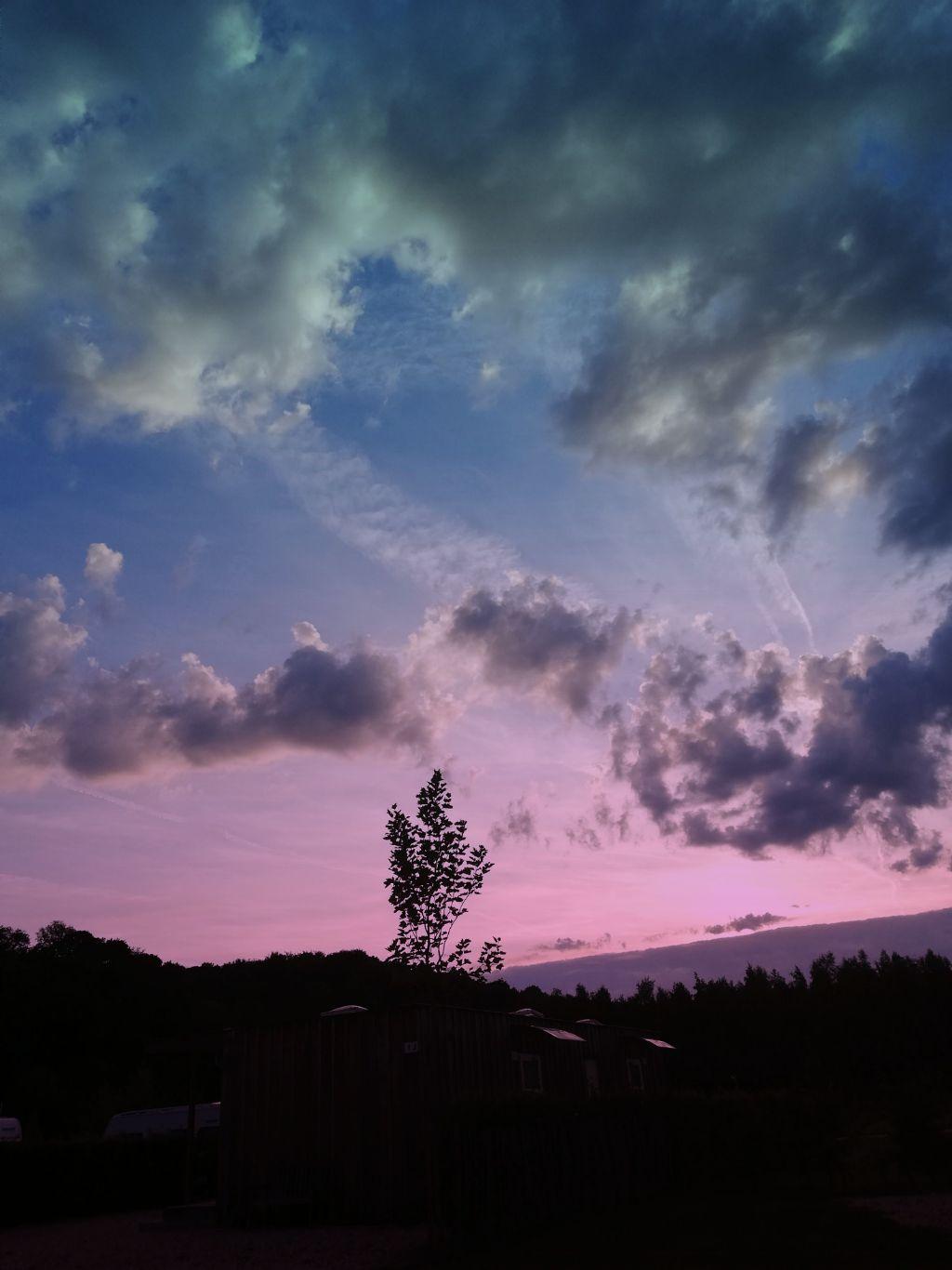 #sky #silhouette #treeline #maskeffect #gradientmask  #freetoedit
