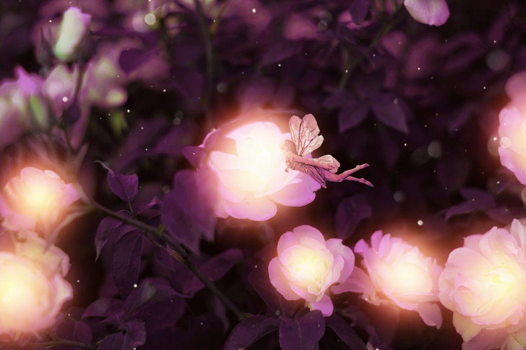 #freetoedit #fairy #flowers #blossoms #sun #color #drama #peddles #picsart #glare #plants #madewithpicsart #surreal #beautiful