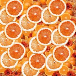 freetoedit hintergrund orange picsart