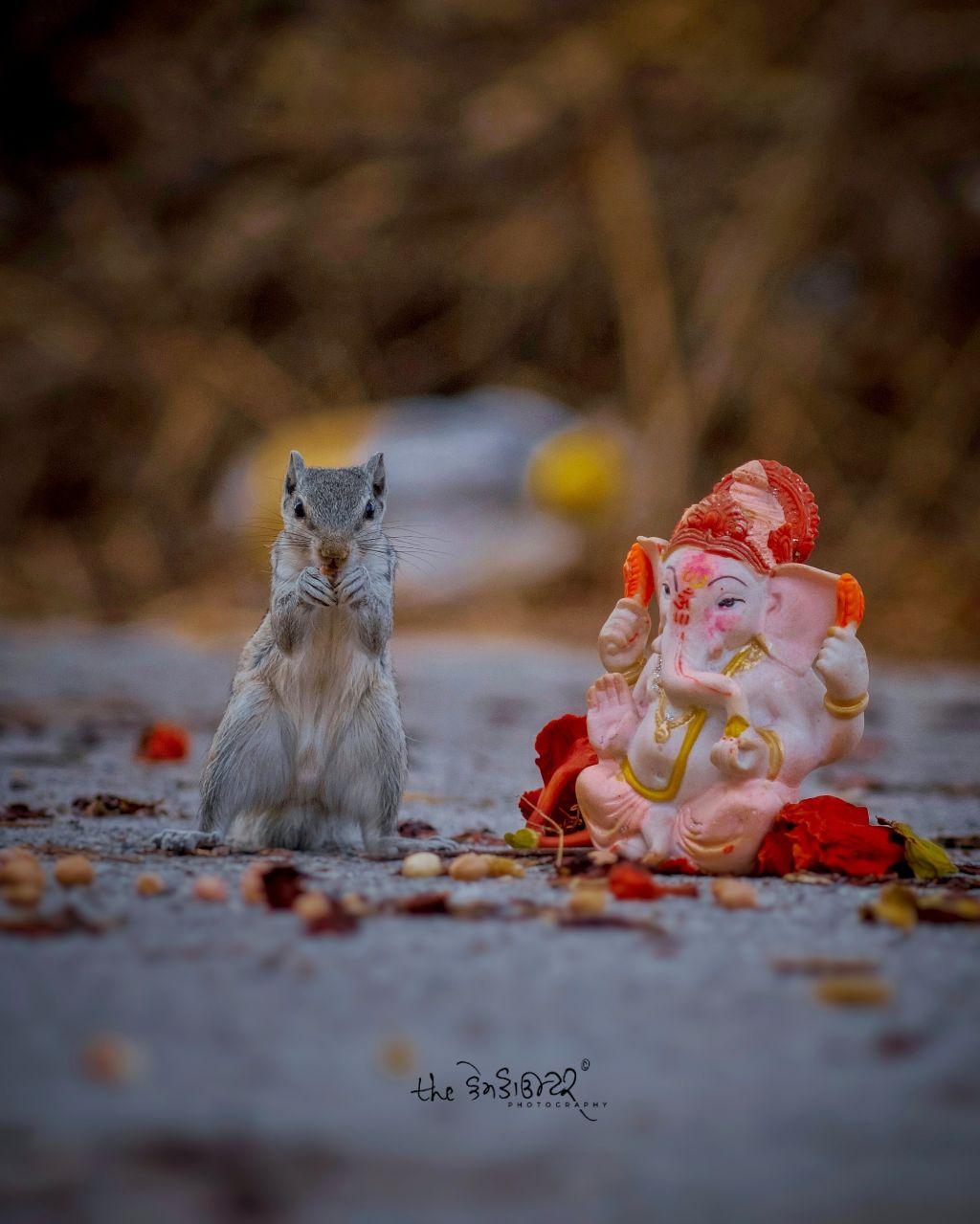 Agale baras tu jaldi aa #ganesha  #camcounter #photography #picsart @picsart