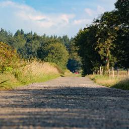 freetoedit walk walking nature naturephotography