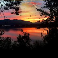 ftestickers landscape lake trees silhouette freetoedit