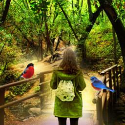freetoedit landscape naturesbeauty forest birds