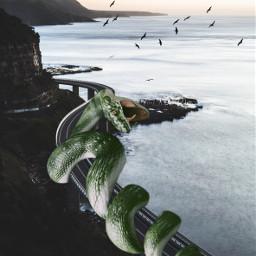 freetoedit challenge snake snakes big ecgiantanimals