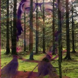 forestpark freetoedit