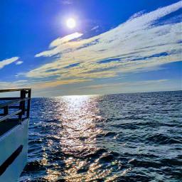 boathouse boat sunshine ocean oceanwave freetoedit pcminimalism