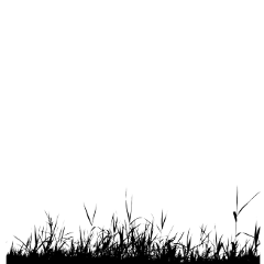 freetoedit ftestickers grass groundcover silhouette