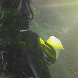freetoedit leaves green sihouette girl