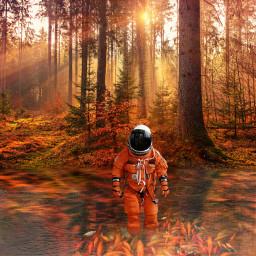 freetoedit astronaut orange autumn forest