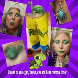 freetoedit turtle turtlesocks pleasebeanorgantissueeyeandbonemarrowdonor dialysissocks