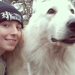 freetoedit dog icebear fluffy