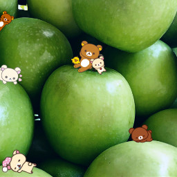 rilakkuma cutebear apple rilakkumakawaii freetoedit