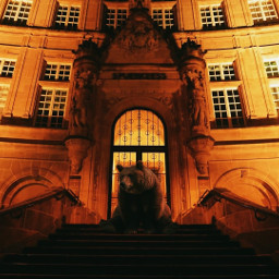 travel luxembourg bear beast building