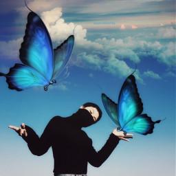 freetoedit myedit editedbyme butterflies surrealart ircblackandblue