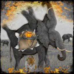 freetoedit elephant myedit africa surreal