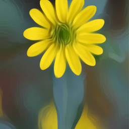 flower yellow daisy nature oilpaintingeffect