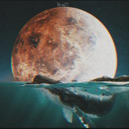 freetoedit moon sea whale underwater