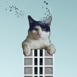 freetoedit dispersiontool cat