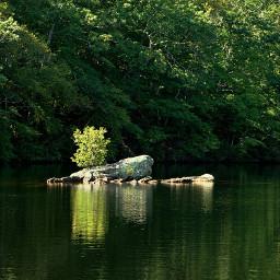 freetoedit outdoorphotography lake roks trees