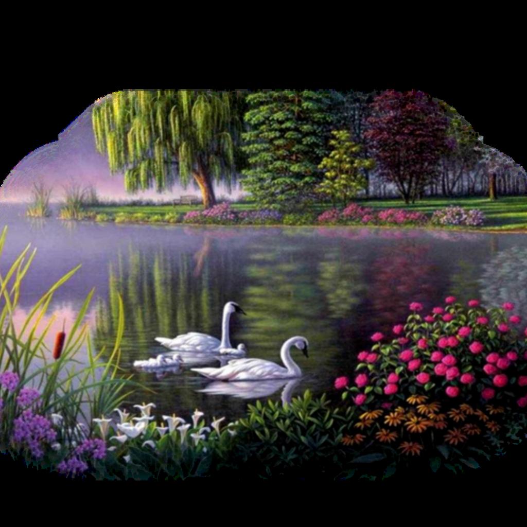#ftestickers #landscape #scenery #lake #trees #ducks #colorful