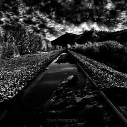 blackandwhite photography ghostfollowers dontfollowme freetoedit