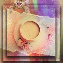 freetoedit pink coffeecup cat rose