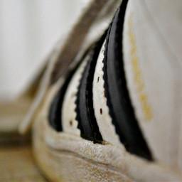 shoesoftheday loves adidas
