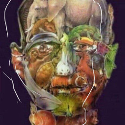 art fan funnyfaces animals funny freetoedit