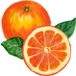 orange@verenaweber2 dcmyfavfruit myfavfruit orange