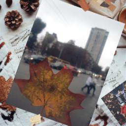 freetoedit autumncolors autumnvibes autumncollage
