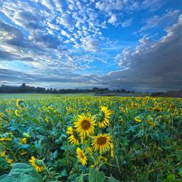 landscapephotography naturephotography freetoedit remixit clouds