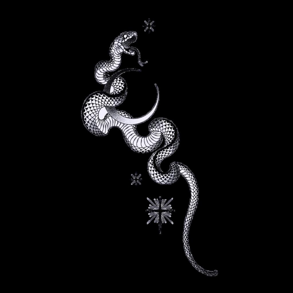 #tattoo #tattooday #snake #black #white
