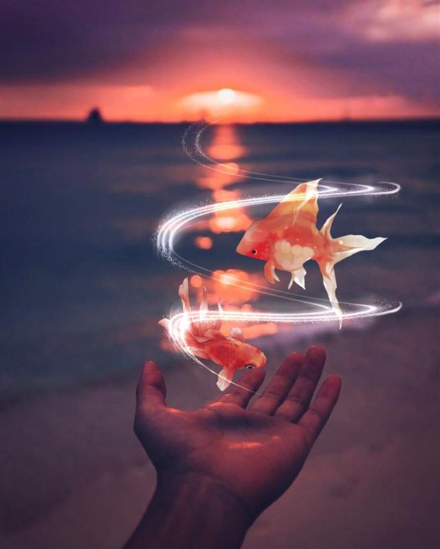 @liv_a fish sticker #edited #surreal #becreativeonchallenge #photomanipulation #swirl #madewithpicsart