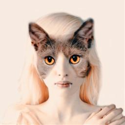 freetoedit transformation cat woman eyes