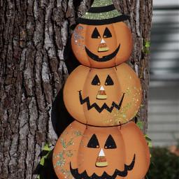 freetoedit halloween cute onmystreet canonphotography