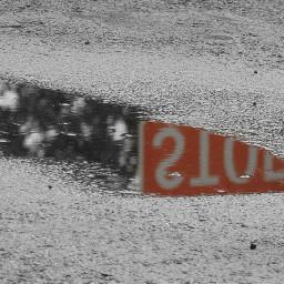 myphotography pavement rainwater puddle reflection